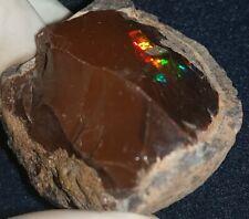 120.25 Carat Ethiopian Chocolate Shewa Rough Opal #4100427028