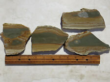 785  PICTURE JASPER SLABS GREAT FOR CABS OR ROCK PAINTINGS. FROM OLD ROCK SHOP