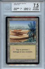 MTG Arabian Nights Oasis BGS Graded 7.5 NM+ Card  Magic the Gathering WOTC 9955