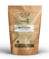 Organic Shatavari Powder - Ground Root Powder | Asparagus Racemosus | Pure Herb