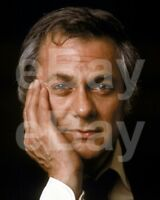 The Persuaders (TV) Tony Curtis 10x8 Photo