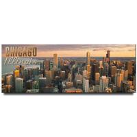 Chicago panoramic fridge magnet Illinois travel souvenir Windy City