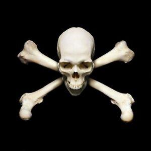 Aufkleber TOTENKOPF Skull Gothic Pirat Piraten Sticker fürs Auto Motorrad Deko