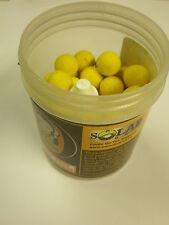 Solar Top Banana 14mm Pop Ups + Glug pesca della carpa