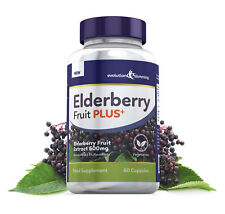 Elderberry Fruit Plus Fruit Extract 600mg 5% Flavanoids 60 Capsules Antioxidants