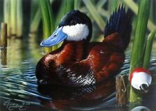 2002 Minnesota Duck Stamp Print by John Frieberg Signed and Numbered