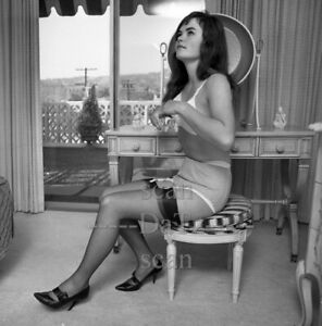 1960s Negative-sexy brunette pinup girl Althea Daglish-cheesecake t972616