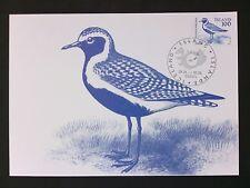 ISLAND MK 1982 FAUNA VOGEL VÖGEL BIRD BIRDS MAXIMUM CARD MC CM d1730