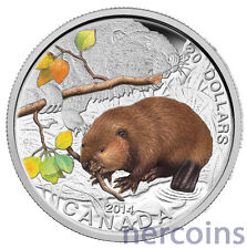 Canada 2014 Baby Animals Beaver $20 Pure Silver Proof Coin Perfect