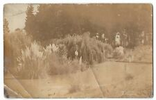 Unidentified Country House Garden RP PPC Unposted, Location Unknown, c 1910's
