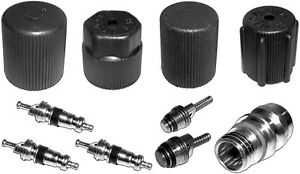 A/C System Valve Core and Cap Ki fits 1994-2001 Plymouth Grand Voyager,Voyager N