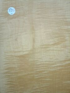 LARGE CONSECUTIVE SHEETS OF  SYCAMORE VENEER 80 X 25 CM MARQUETRY WSS #1