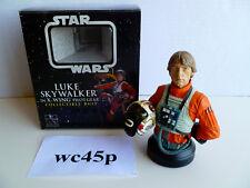 Gentle Giant Star Wars LUKE SKYWALKER X-WING PILOT GEAR A New Hope Mini Bust