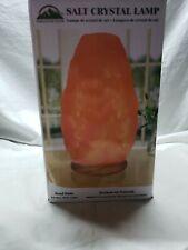 WBM Himalayan Pink Traditional Hand Carved Natural Salt Crystal Table Lamp Light