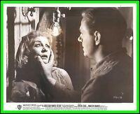 "VIVEN LEIGH & KARL MALDEN in ""A Streetcar Named Desiree"" Original Vintage 1951"