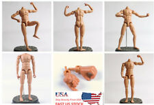 Action Figures 1:6 Nude Body NEO3 Dragon Male Bodies (No Head W Extra Hand)