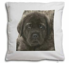 More details for bullmastiff puppy soft velvet feel cushion cover with inner pillow, ad-bmt3-cpw