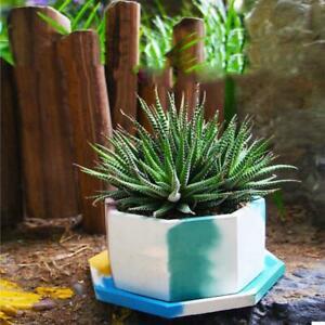 Flower Pot Mold Silicone Succulent Flowerpot Plant Vintage Mould Concrete Cement