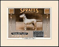 BULL TERRIER GREAT DOG FOOD CALENDAR ADVERT PRINT MOUNTED READY TO FRAME