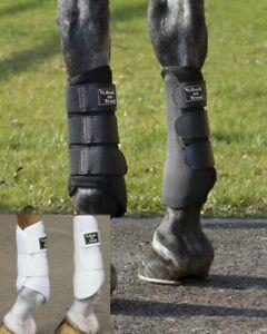 Back on Track 3D mesh Brushing Gamaschen Beinschutz Therapie schwarz oder weiß