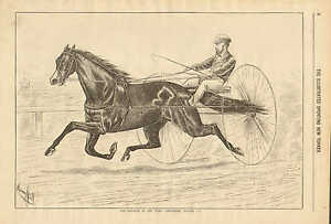 Hores, Harness Racing, Sulkey, Emperior Of The Turf Smuggler, Vintage 1876 Print