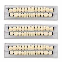 84pcs/3sets Acrylic Resin Tooth Dental Full Set Teeth Upper Lower Shade 23# A3