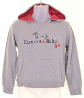 HARMONT & BLAINE Boys Hoodie Jumper 15-16 Years XL Grey Cotton KN09