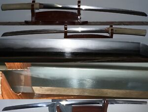 Long Gendai Japanese Katana - Seishinshi Sadatoshi 1973 Gendaito Nihonto 71.6cm