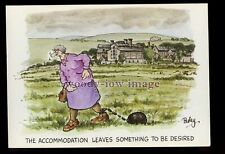 BES069 - Accommodation leaves Something to be Desired!! - Besley comic postcard