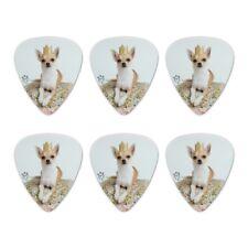 Chihuahua Cushion King Puppy Dog Novelty Guitar Picks Medium Gauge - Set of 6