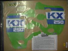 KAWASAKI KX250 KX250 1988 Calcomanías Gráficos Pegatinas Rad