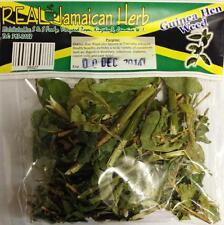 Real Jamaican Herb Guinea Hen Weed