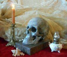 NEW!!! Human skull copy bronse metal original composition.Gift to Halloween.