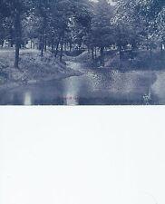 Springhill Cemetery  Danville IL   Spring Hill  Postcard 41613