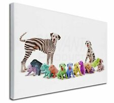 More details for colourful dalmatian dogs x-large 30