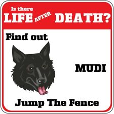 Crossing Sign Mudi Dog Is There Life After Death Jump Fence Cross Xing Metal