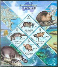 SOLOMON ISLANDS  2013 AUSTRALIAN FAUNA  PLATYPUSES  SHEET  MINT NH