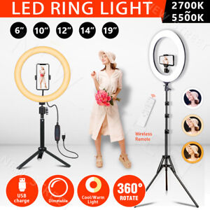 """6""""/10""""/12''/14""""/19"""" Dimmable Diva LED Ring Light Tripod Stand Selfie Circle Lamp"""