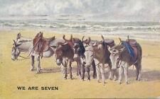 PC61415 We are Seven. Donkeys. Photochrom. Celesque. 1923