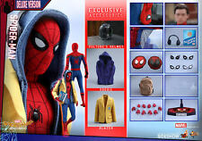 "Hot Toys Marvel Spider-Man Homecoming Spider-Man Deluxe Ver 1/6 Scale 12"" Figure"