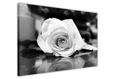 LARGE CANVAS WALL ART PICTURES BLACK AND WHITE ROSE / PRINTS / FLOWER DECORATION