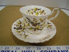 Royal Albert English Bone China Woodland Series Robin Tea Cup & Saucer Set - EUC