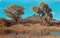 Chrome Postcard Arizona I027 Tuzigoot National Monument Clarkdale Verde Valley