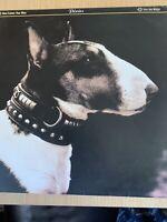 Vinyl Lp Album Pixies here comes your man BAD 909 4AD