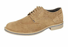 Suede Lace-up Roamers Shoes for Men