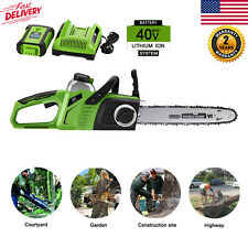 """40V Max Cordless 14"""" Electric Chainsaw Pole Chain Saw w/ 4.0AH Battery & Charger"""