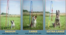 Tether-Tug-MEDIUM-Outdoor-Dog-Toy-Interactive-Backyard Tugging Pull Exercise Toy