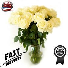 Fresh White Roses Flower Bouquet 12 Roses Long Stem - Luxury & Fresh Roses - Usa