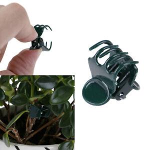 100x/Bag Garden Plant Support Clips Flower Orchid Stem Clips for Vine SupOI