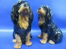 Cavalier King Charles Spaniel Salt & Pepper - Black & Tan Cavalier Salt & Pepper